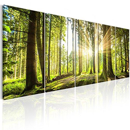 murando - Bilder Wald 200x80 cm Vlies Leinwandbild 5 TLG Kunstdruck modern Wandbilder XXL Wanddekoration Design Wand Bild - Waldlandschaft Natur Panorama Baum c-C-0177-b-n
