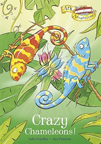 Ark Adventures: Kung Fu Kangaroos! by Sally Grindley (5-Jan-2012) Paperback