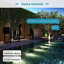 Alexa remote switch   Hardware-Store co uk/