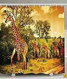 BBFhome Hem Gewichte Vorhang Duschvorhang 90x180 CM African Safari Dekor Giraffe und Tiere Kunst für Badezimmer Dekorationen für Kinder Teens Wild Jungle Wüste Themed Orange Braun Beige Grün