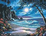Peinture par numéro Kit 20 « X 16 »-au clair de lune paradis