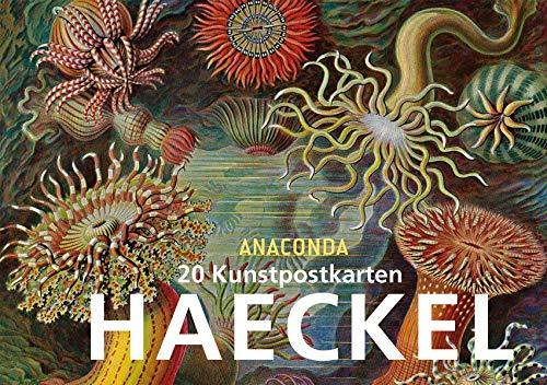 Postkartenbuch Ernst Haeckel