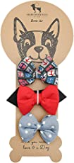 HUFT Gentlemen's Club Collection Multicolor Bow Ties for Dogs (Set of 3)