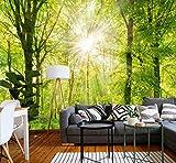 murimage Papier Peint Forêt 3D 274 x 254 cm Photo Mural Bois Arbres lumière du Soleil salle de séjour wallpaper colle inclus