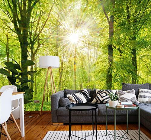 Murimage carta parati foresta 3d 274 x 254 cm legno sole alberi luce solare fotomurali poster gigante soggiorno include colla