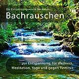 Die Entspannungsmusik der Natur: Bachrauschen zur Entspannung, für Wellness, Meditation, Yoga, gegen Tinnitus