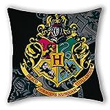 Zierkissen Harry Potter 40x40 Dekokissen