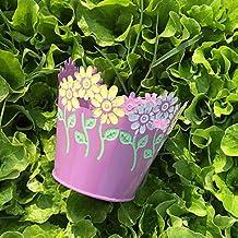 YFF Candy color 6 colores ronda jardín maceta,púrpura