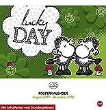 Sheepworld - lucky day - 17-Monats-Kalender 2018 - Heye-Verlag - Posterkalender - Wandkalender mit Schulferien - 32 cm x 33 c
