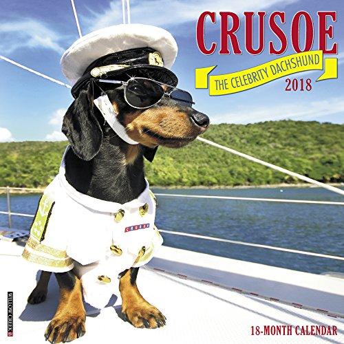 Crusoe the Celebrity Dachshund 2018 (Kostüm Für Haustiere Und Besitzer)