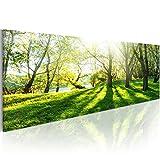 murando - Bilder 120x40 cm - Leinwandbilder - Fertig Aufgespannt - Vlies Leinwand - 1 Teilig - Wandbilder XXL - Kunstdrucke - Wandbild – Landschaft Natur Bäume c-B-0053-b-a