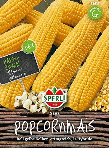 Maissamen – Mais (Popcornmais) Nana von Sperli-Samen