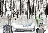 Vlies Fototapete Fotomural - Wandbild - Tapete - Wald Winter Schnee - Thema Wald und Bäume - MUSTER - 104cm x 70.5cm (BxH) - 1 Teilig - Gedrückt auf 130gsm Vlies - FW-1061VEM