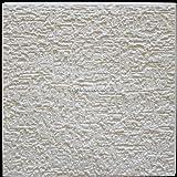 Pannelli Soffitto in Polistirolo Terra (Pacco 72 pz / 18 mq) Bianco