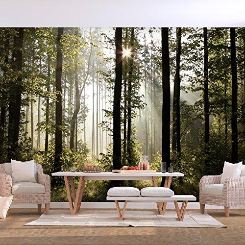 decomonkey   Fototapete Wald grün 400x280 cm   VLIES TAPETE   moderne Wanddeko   Riesen Wandbild   Design   Fototapeten   Wandtapete   Landschaft Baum Bäume NatuR FOC0007a84XL