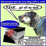Würge-freies, zerr-freies, von vorne führendes Hundegeschirr, Originalausführung, Größe 3 kg bis 113 kg, 8 Farben - 6