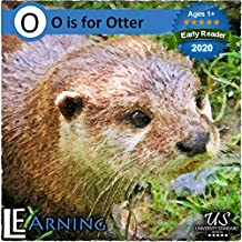 My Advanced Child: Lear the alphabet & common images simultaneously (English Edition)