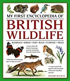 My First Encyclopedia of British Wildlife: Mammals, Birds, Fish, Bugs, Flowers, Trees (My First Encylopedia)