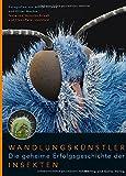Wandlungskünstler. Die geheime Erfolgsgeschichte der Insekten - Veronika Straaß;Claus-Peter Lieckfeld;Oliver Meckes;Nicole Ottawa