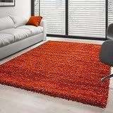 Teppich Hochflor Wohnzimmer Langflor Shaggy Unifarbe vers. Farben und Größen - Terracotta, 200x290 cm