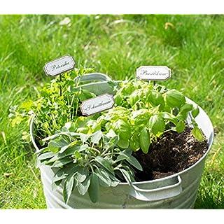 UMOI 10 Verschiedene Gartenstecker Kräuterstecker aus Metall im Shabby Chic Vintage Look für Garten Küche oder Gewächshaus (Bärlauch)