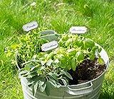 10 Verschiedene Gartenstecker Kräuterstecker aus Metall im Shabby Chic Vintage Look für Garten Küche oder Gewächshaus (Pfefferminze)
