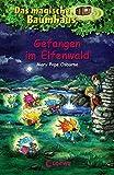 Das magische Baumhaus - Gefangen im Elfenwald: Band 41