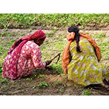 Women Who Dig: Farming, Feminism and the Fight to Feed the World