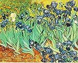 Malstudio DIY Malerei von Nummer kits Bilder auf Leinwand Iris Blume (ohne Holzrahmen) 16x20 Zoll