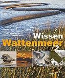 Wissen Wattenmeer