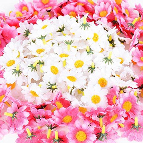flores baratas amazon