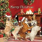 Noël chien Conga simple Carte de Noël–Glitter Finition