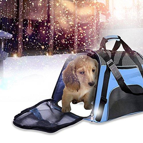 Rucksack Tragbare Reisetasche für Hunde, Katzen, Haustiere Genehmigt von Fluggesellschaften (S:43*20*29cm, (In Der Box Barbie Kostüm)