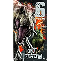 JURASSIC WORLD JW011 Age 6 Birthday Card with Sticker Sheet