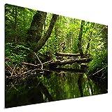 Bild auf Leinwand - Regenwald - Fotoleinwand24 / AA0679 / Bunt / 100x70 cm