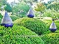 ROSENKUGEL ZAPFEN geringelt KERAMIK H15 handgearbeitet blau Kunstkeramik FROSTFEST von Vollwaren - Du und dein Garten