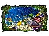 3D Wandtattoo Unterwasser Welt Korallen Fische Bild selbstklebend Wandbild sticker Wohnzimmer Wand Aufkleber 11H548, Wandbild Größe F:ca. 97cmx57cm