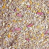 Garden Wildlife Direct No Mess / No Waste / No Grow Wild Bird Seed Mix (25Kg)