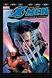 Image de X-Men: The End Book One