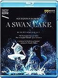 A Swan Lake (Ein Schwanensee) (Oslo Opera House, 2014) [Blu-ray]
