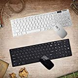 Apple Wireless Keyboard Mouse Combos Review and Comparison