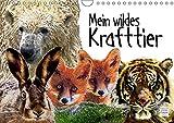 Mein wildes Krafttier (Wandkalender 2019 DIN A4 quer): Wilde Krafttiere ganz nah bei mir. (Monatskalender, 14 Seiten ) (CALVENDO Tiere)