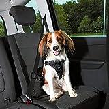 Trixie Auto-Sicherheitsgeschirr Dog Protect S-M: 40-55 cm