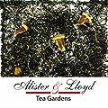 Alister & Lloyd - Thé Blanc - 501 Tristan