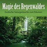 Magie des Regenwaldes: Exotische Naturgeräusche