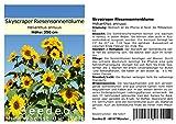 Seedeo® Sonnenblume Skyscraper Riesensonnenblume (Helianthus annuus) 25 Samen