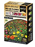 Semillas Batlle 160093UNID Mix de flores crecimiento rápido