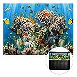 3D Aquarium Fisch Tank Hintergrund Malerei, 152x 61cm Coral Sea Vivid Szene Tapete, Verdickte PVC, einseitig Digitaldruck, bunt, Small