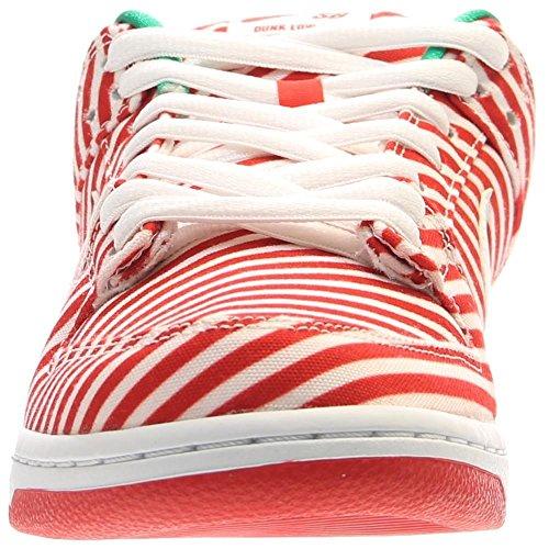 Nike Dunk Low Premium Sb Skate Shoe Red