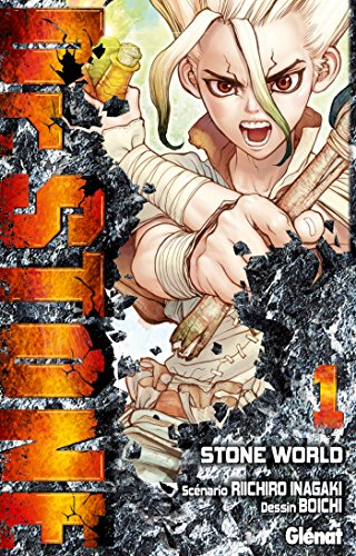 Dr. Stone - Tome 01 : Stone World